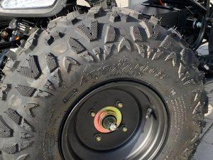 TR300 Rad Detail